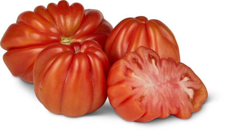 Pomodoro Cuore di Bue Dentato